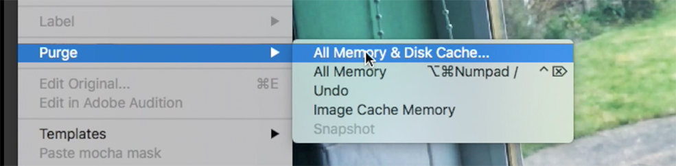 How to Fix Cached Preview in After Effects — Purging