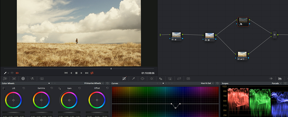 Get The Sicario Grade Look by Using HSL Curves — Hue Curve Node