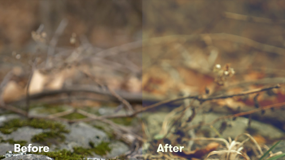How to Get the Most Out Of Your LUTs in Premiere Pro — Before and After