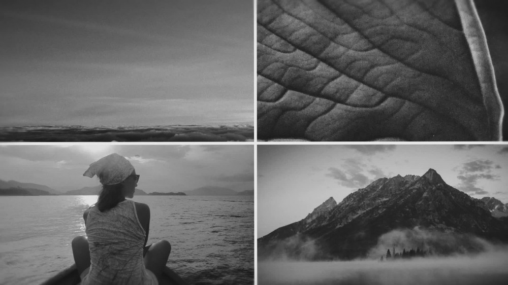 Photo Gallery After Effects Templates from VideoHive